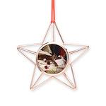 Lazing Copper Star Ornament