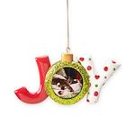 Lazing Joy Ornament