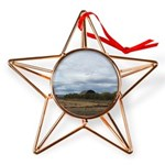 Harvest Time Copper Star Ornament