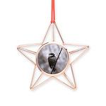 Chickadee Winter Copper Star Ornament
