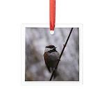 Chickadee Winter Square Glass Ornament