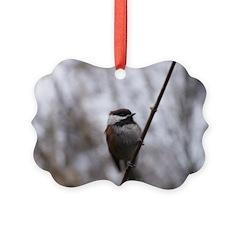 Chickadee Winter Picture Ornament