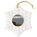 Prairie Moonscape Snowflake Ornament