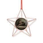 Cat Lounge Copper Star Ornament