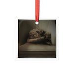 Cat Lounge Square Glass Ornament