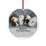 Guinea pig Merry Christmas Ornament (Round)