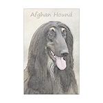 Afghan Hound Mini Poster Print