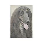 Afghan Hound Rectangle Magnet (100 pack)