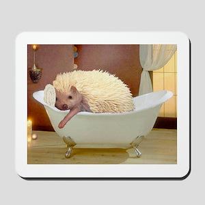 Hedgie Spa Mousepad