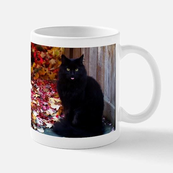 Kitty with an Attitude Mug