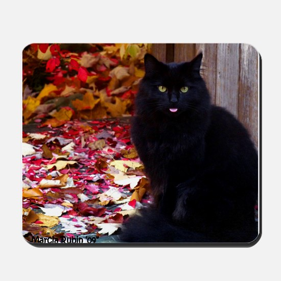 Kitty with an Attitude Mousepad