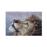 Winter Lion Rectangle Magnet (10 pack)