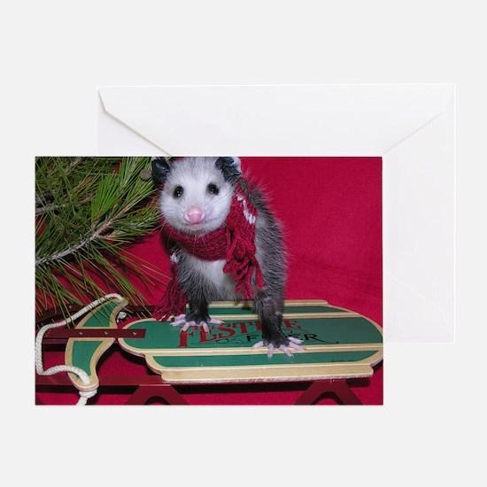 Christmas Card Opossum on Sled