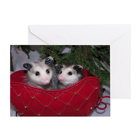 Christmas Card Opossums in Sleigh