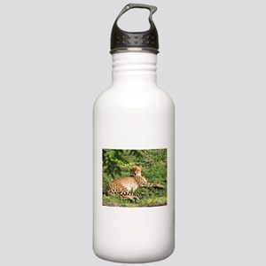 Cheetahs Stainless Water Bottle 1.0L