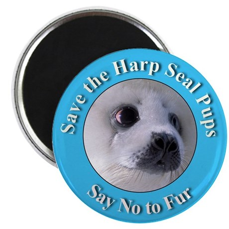 Anti-Fur Harp Seal Pup Magnet
