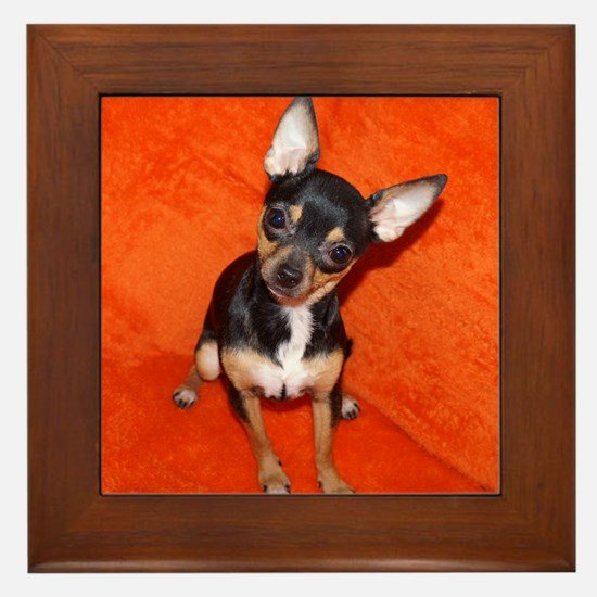 Funny Toy fox terriers Framed Tile