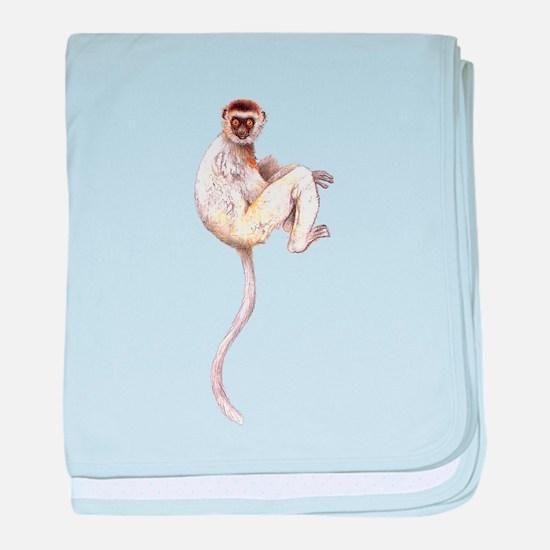 Verreaux's Sifaka Lemur baby blanket