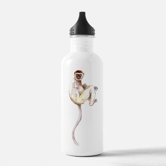 Verreaux's Sifaka Lemur Sports Water Bottle