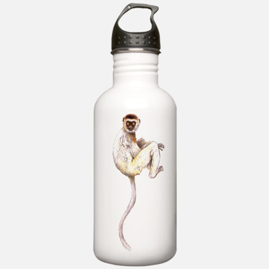Verreaux's Sifaka Lemur Water Bottle