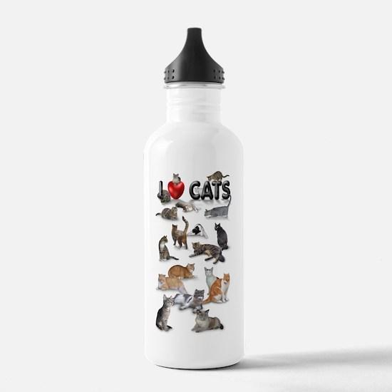 Cute Purr purr Water Bottle
