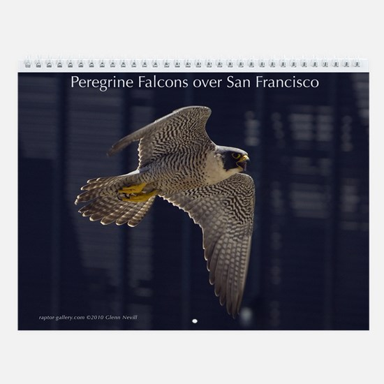 Raptor Calendar #5 Peregrines over San Francisco