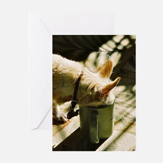 Morning Coffee - Greeting Cards (Pk of 20)