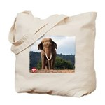 Sabu the Asian Elephant Tote Bag
