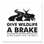 """B/w Give Wildlife A Square Car Magnet 3"""" X 3&"""
