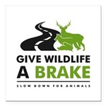 """W/b/gn Give Wildlife A Square Car Magnet 3"""" X"""