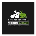 "Bl/w/grn Give Pa Square Car Magnet 3"" X 3&quo"
