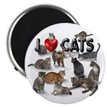 """""""I Love Cats"""" 2.25"""" Magnet (100 pac"""