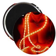 Christmas Lights 1 Magnet