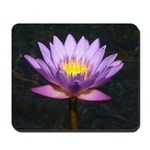Purple Tropical Water Lily Mousepad