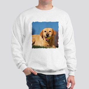YELLOW LAB Sweatshirt