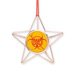 No GMO Biohazard Copper Star Ornament