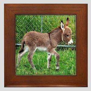 Miniature Donkey Foal Framed Tile