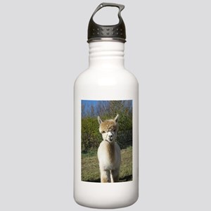Ain't She Cute! Stainless Water Bottle 1.0L
