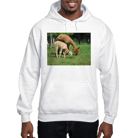Momma & Me Hooded Sweatshirt