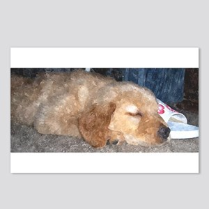 Puppy Sleeping Postcards (Package of 8)