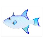 Ocean Triggerfish 5x7 Flat Cards (Set of 10)