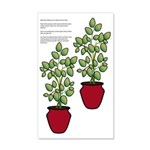 35x21 Wall Decal Planters For Sides Of Front Door