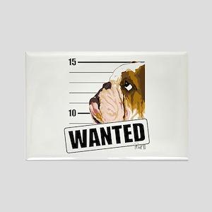 Bulldog Wanted Rectangle Magnet