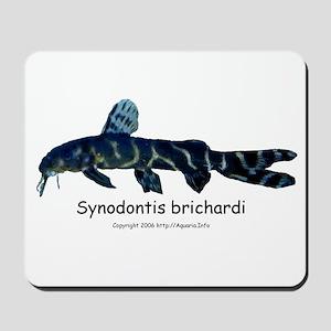 Synodontis brichardi Mousepad