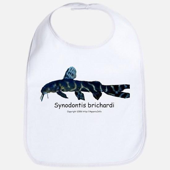 Synodontis brichardi Bib