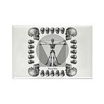 Leonardo da Skull Rectangle Magnet (100 pack)