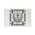Leonardo da Skull Rectangle Magnet (10 pack)