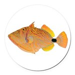 Orange-lined Triggerfish Round Car Magnet