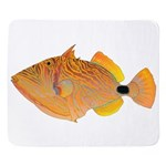 Orange-lined Triggerfish Sherpa Fleece Throw Blank