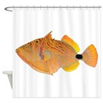 Orange-lined Triggerfish Shower Curtain